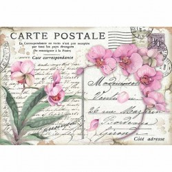 CARTA RISO 48 x 33 PINK ORCHID - STAMPERIA