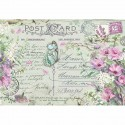 CARTA RISO 48 x 33 VIOLETS AND BUTTERFLY - STAMPERIA