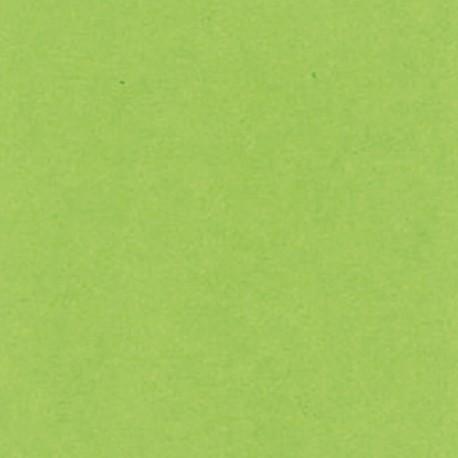 STAMPERIA - CARTONCINO 30 X 30 CM - 250 G / M² VERDE MELA