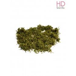 Muschio islanda verde scuro 50gr x 1Pz